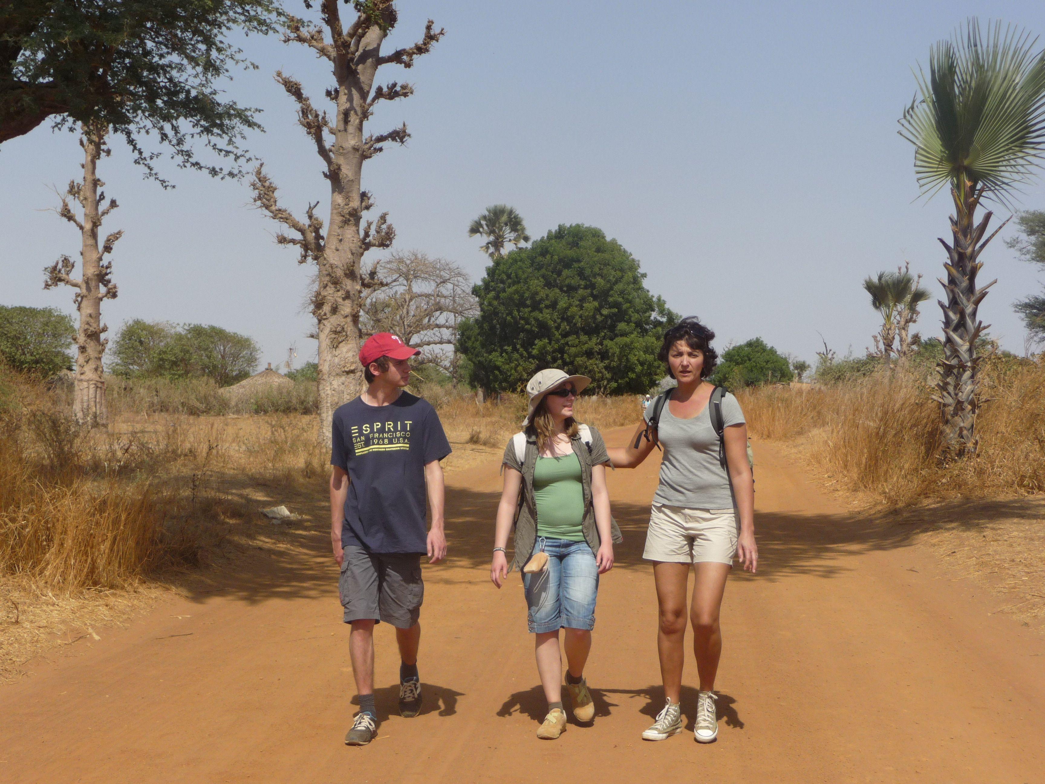 baobab2012_1