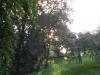 Sortie Nature 2010