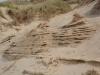 dunes17