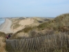 dunes39