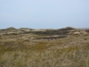 dunes52