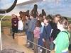 Musée des sciences 2005