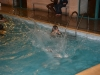 piscine49